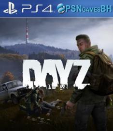 DayZ VIP PS4
