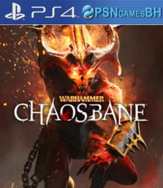 Warhammer Chaosbane VIP PS4